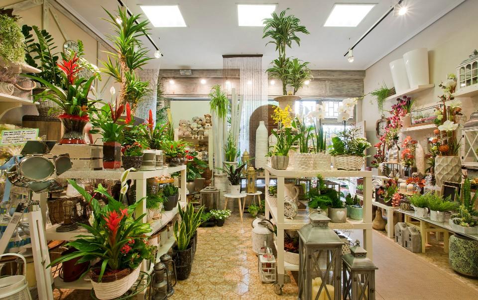cambio floristería reforma local gipuzkoa
